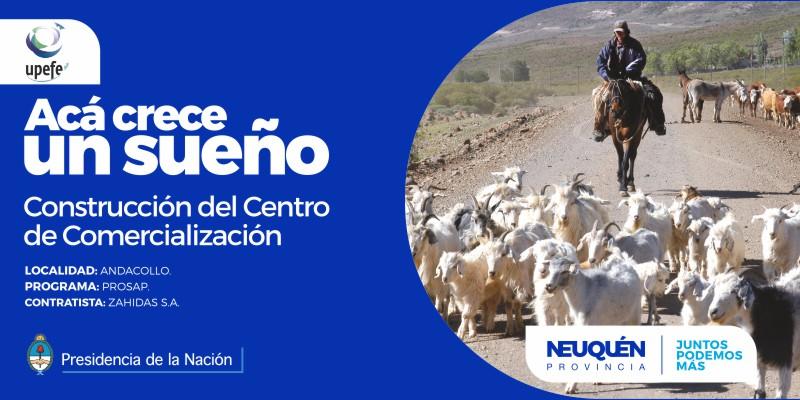 centroComAndacollo